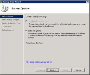Windows-server-Backup-Different-Options